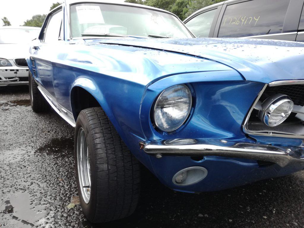 niebieski muscle car